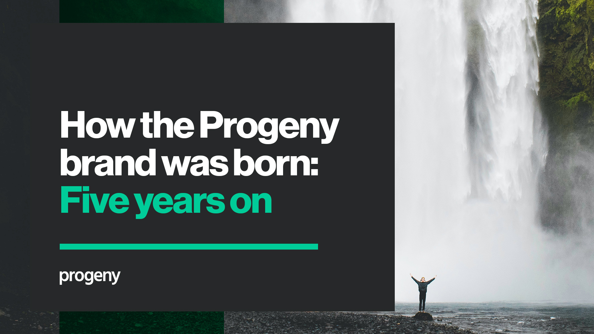 How the Progeny brand was born – five years on